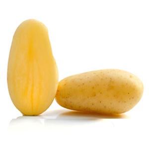 Variété de pomme de terre CELTIANE