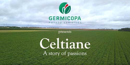Film about the CELTIANE potato