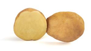 Pomme de terre Luneba