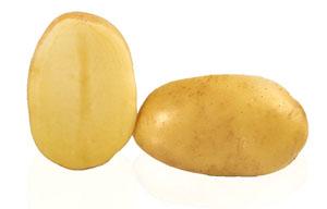 Pomme de terre Alix