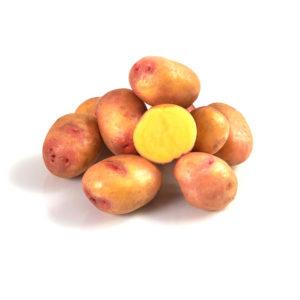 Variété de pomme de terre CATIMINI