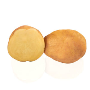 Variété de pomme de terre LUNEBA
